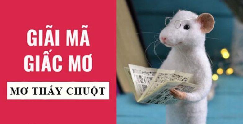 Giải mã giấc mơ: Ngủ mơ thấy chuột nên lựa chọn số lô đề nào?
